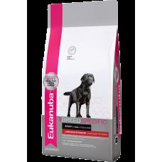 Eukanuba Dog Labrador Retriever