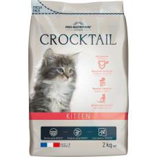 Flatazor Cat Crocktail Kitten