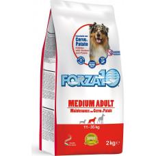 Forza 10 Medium Adult Maintenance Venison and Potato