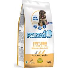 Forza 10 Puppy Junior Medium/Large Maintenance Chicken and Potato