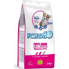 Forza 10 Puppy Junior Small/Medium Maintenance