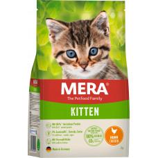 Mera Kitten Chicken