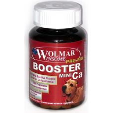 Wolmar Winsome Pro Bio Booster Ca Mini 180 таб.