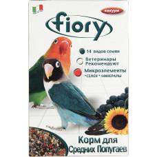 Fiory Parrocchetti Africa