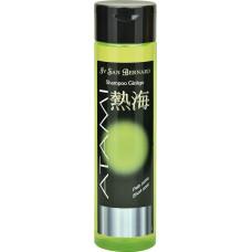 Iv San Bernard Atami Ginkgo Shampoo