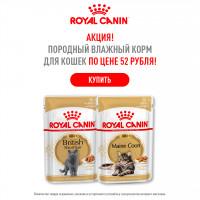 Снижение цен на Royal Canin! Породные паучи для кошек по цене 52 руб!