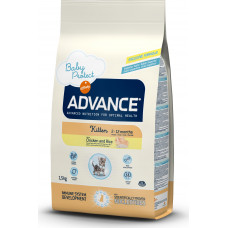 Advance Baby Protect Kitten Chicken and Rice