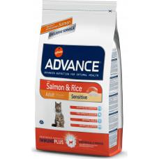 Advance Sensitive Salmon and Rice Feline