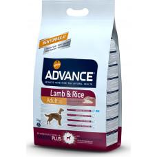 Advance Lamb and Rice