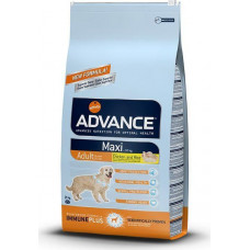 Advance Maxi Adult Chicken and Rice