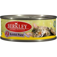 Berkley Cat Rabbit