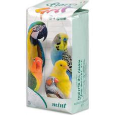 Fiory Grit Mint мята 1 кг