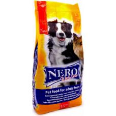 Nero Economy with Love