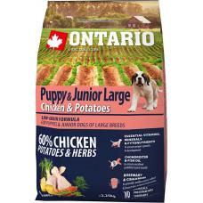 Ontario Puppy & Junior Large Chicken & Potatoes