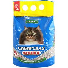 Сибирская Кошка Эффект