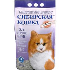 Сибирская Кошка Прима