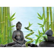 Tetra DecoArt Poster Buddha&Bamboo